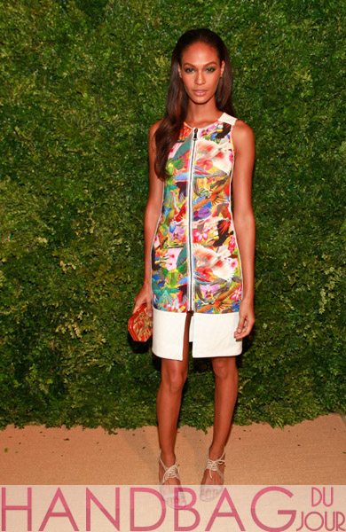Model-Joan-Smalls-attends-the-8th-Annual-CFDA-Vogue-Fashion-Fund-Awards-at-the-Skylight-SOHO-on-November-14,-2011-in-New-York-City-with-Amanda-Pearl-Cosima-Clutch