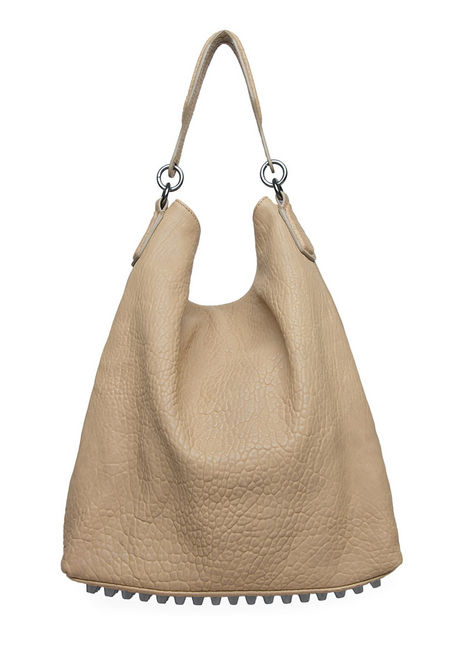 Alexander Wang Darcy Hobo Bag