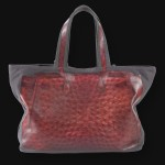 V73 bag in Struzzo red - back