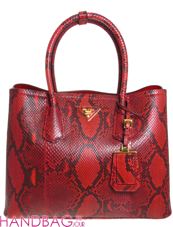 Limited Edtion Prada Pitone Double Bag in Rosso